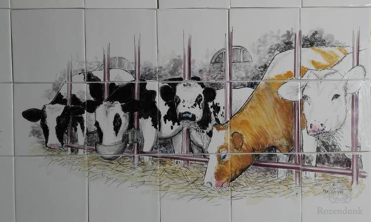 RH15-Koeien op stal
