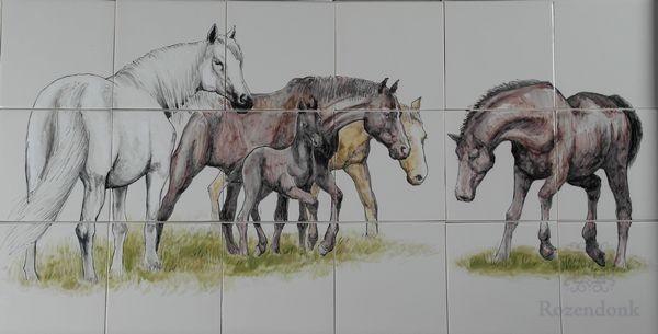 RH18-R Paarden