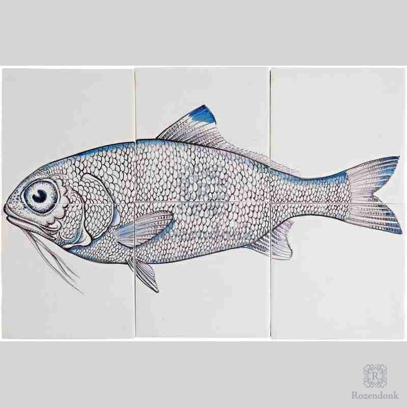 RH66-Fish10