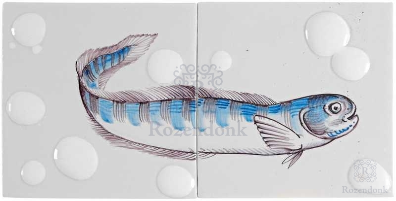 RH2-Fisk8 op 2 tegels