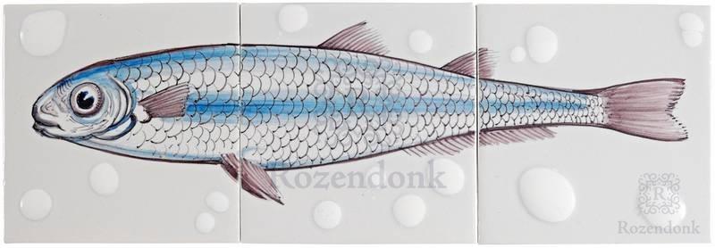 RH3-Fish18