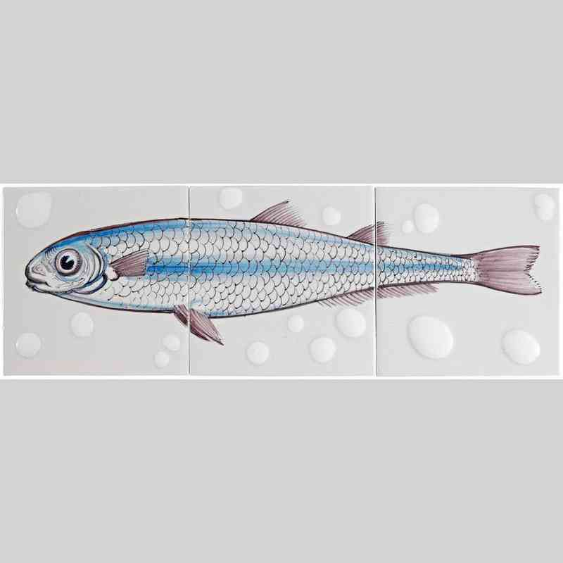 RH3-Fisk9 op 3 tegels
