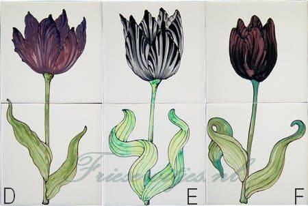 RH2-10, zwarte tulpen