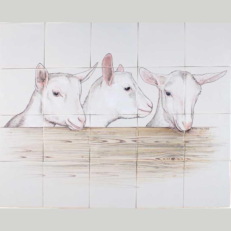 RH20-8 3 Nieuwsgierige geitjes