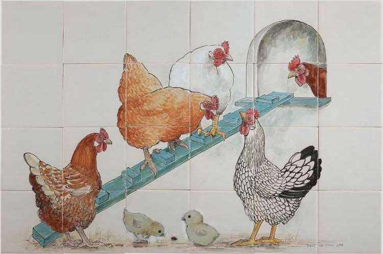 Kippen bij het hok