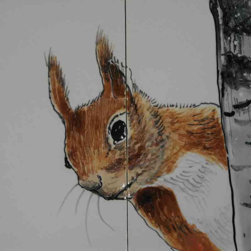 RH35-5 Eekhoorntjes