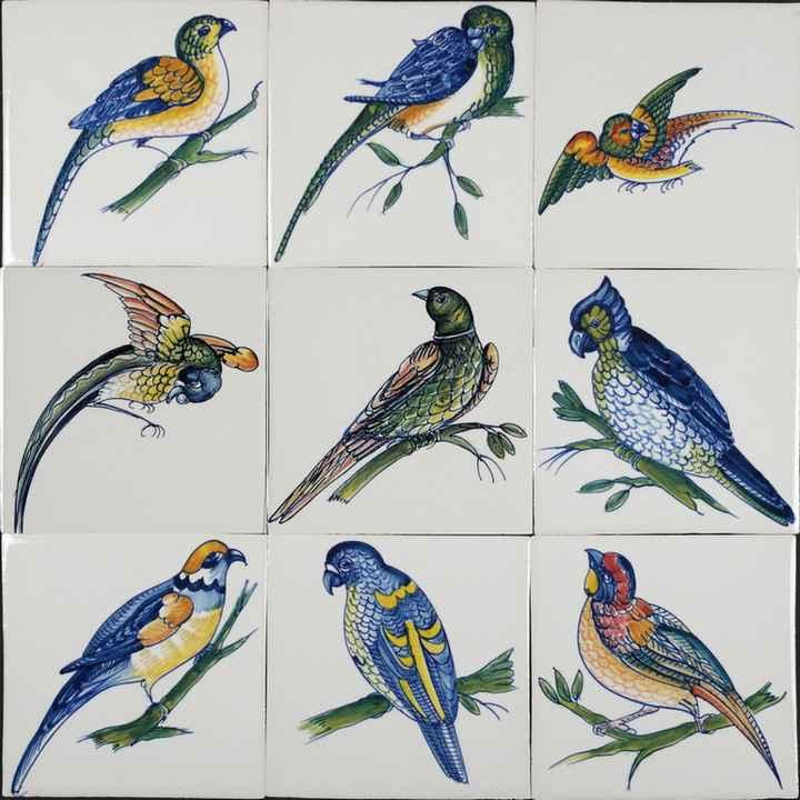 RM1-5 Papegaai achtige vogels
