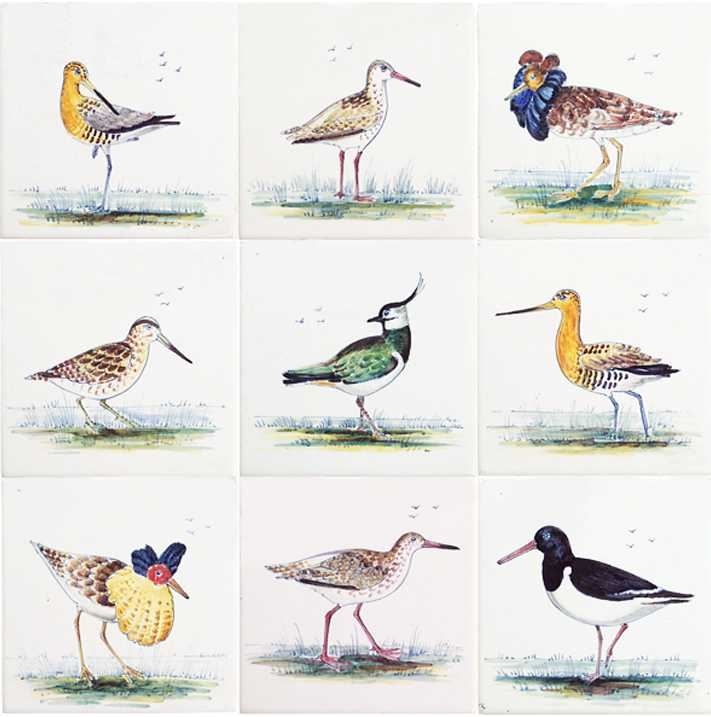 RH1-9k Weide vogels