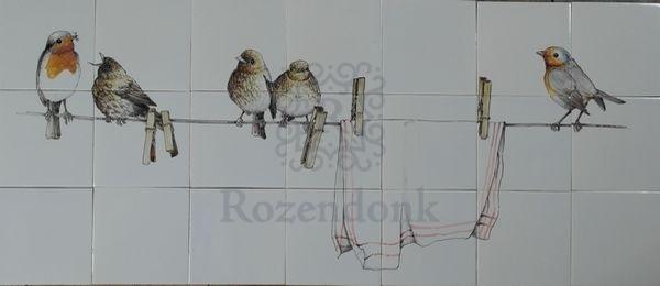 RH27-5 Roodborstjes